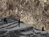 """Esben And The Witch – Neuer Track """"Dull Gret"""" und Europa-Tour"""