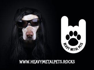_Heavy-Metal_Pets